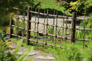Photo of a trellis-like bamboo fence, tied together with black twine string