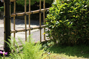 Close-up of fencing screen in Japanese garden
