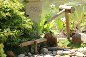 Further image showing the bamboo deer scarer, with its pump and reservoir hidden beneath the pebbles