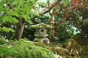 Photo showing a traditional snow lantern beneath Japanese maples