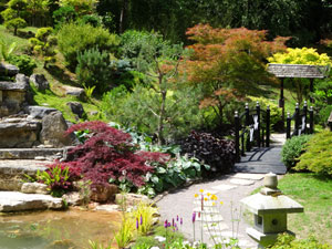 View of an oriental garden with granite pillar lanterns, maples and a large koi pond