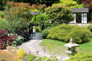 Photo of a landscaped garden with many different oriental features