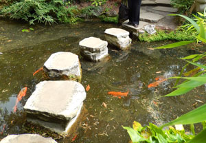 Picture of stepping stones leading over the water