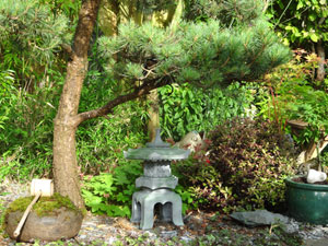 Photo of a pine tree with cloud foliage, together with a granite 'Narabe yukimi' snow lantern and stone water basin with bamboo ladle