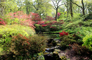 Photo of a natural-style rock waterfall in beautiful Japanese garden in the spring